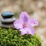 Was ist der Unterschied zwischen Achtsamkeit und Meditation?