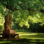 Was Du über Pausen wissen solltest und wie Du herausfindest, was Du brauchst