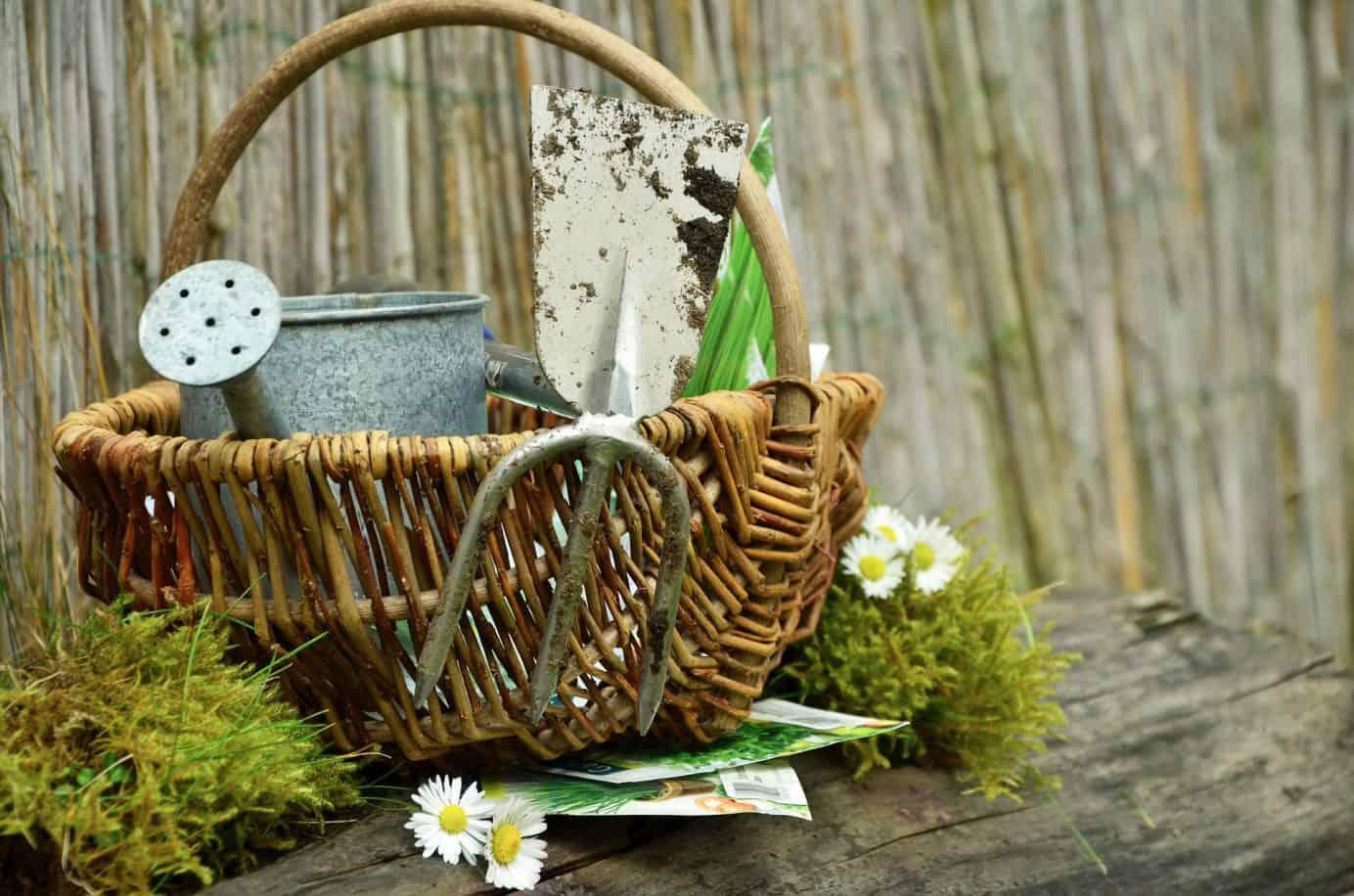 Frühjahrsputz